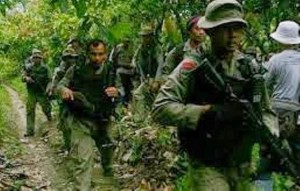 Joint Brimob/TNI sweep team in Nabire oil Palm plantations. Photo:FIle